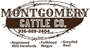 Montgomery Cattle Co